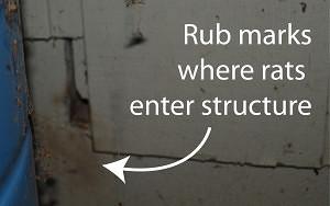 Rub_marks